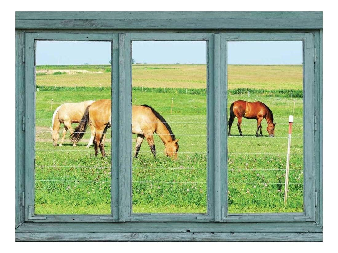 wall26 - Horses in a Pasture grazing on Green Grass - Wall Mural, Removable Sticker, Home Decor - 24x32 inches
