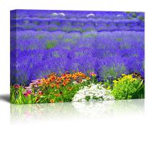 """Canvas Prints Wall Art - Beautiful Scenery of Lavender Field with Multicolored Flowers 