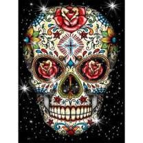 "SKRYUIE 5D Diamond Painting Rose Skeleton Full Drill Paint with Diamond Art, DIY Skull Flower Painting by Number Kits Cross Stitch Embroidery Rhinestone Wall Home Decor 30x40cm (12""x16"")"
