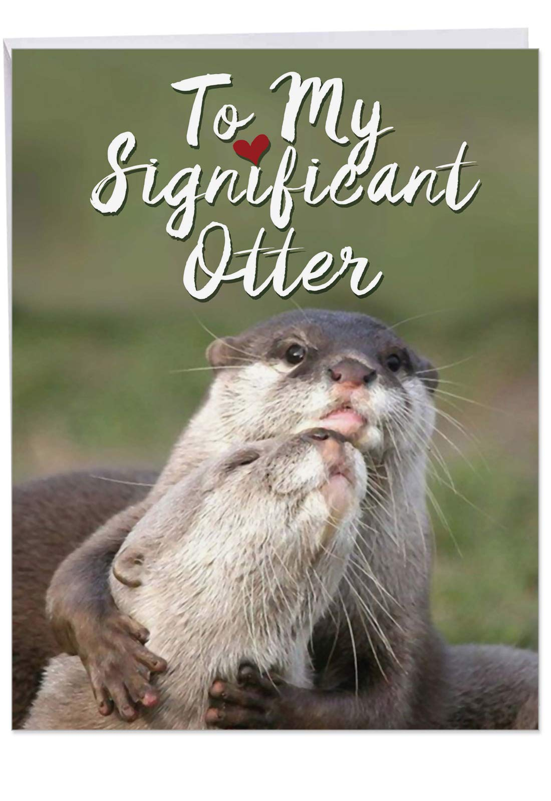 Significant Otters - Adorable Birthday Greeting Card for Husband, Wife (Big 8.5 x 11 Inch) - Cute Animal Bday Notecard with Envelope - Romantic, Loving Stationery Gift J5528BDG