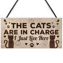 "Meijiafei Funny Cat Gifts for Cat Lovers Gift for Women Home Decor Plaque Animal Sign Pet Novelty Gifts 10"" X 5"""