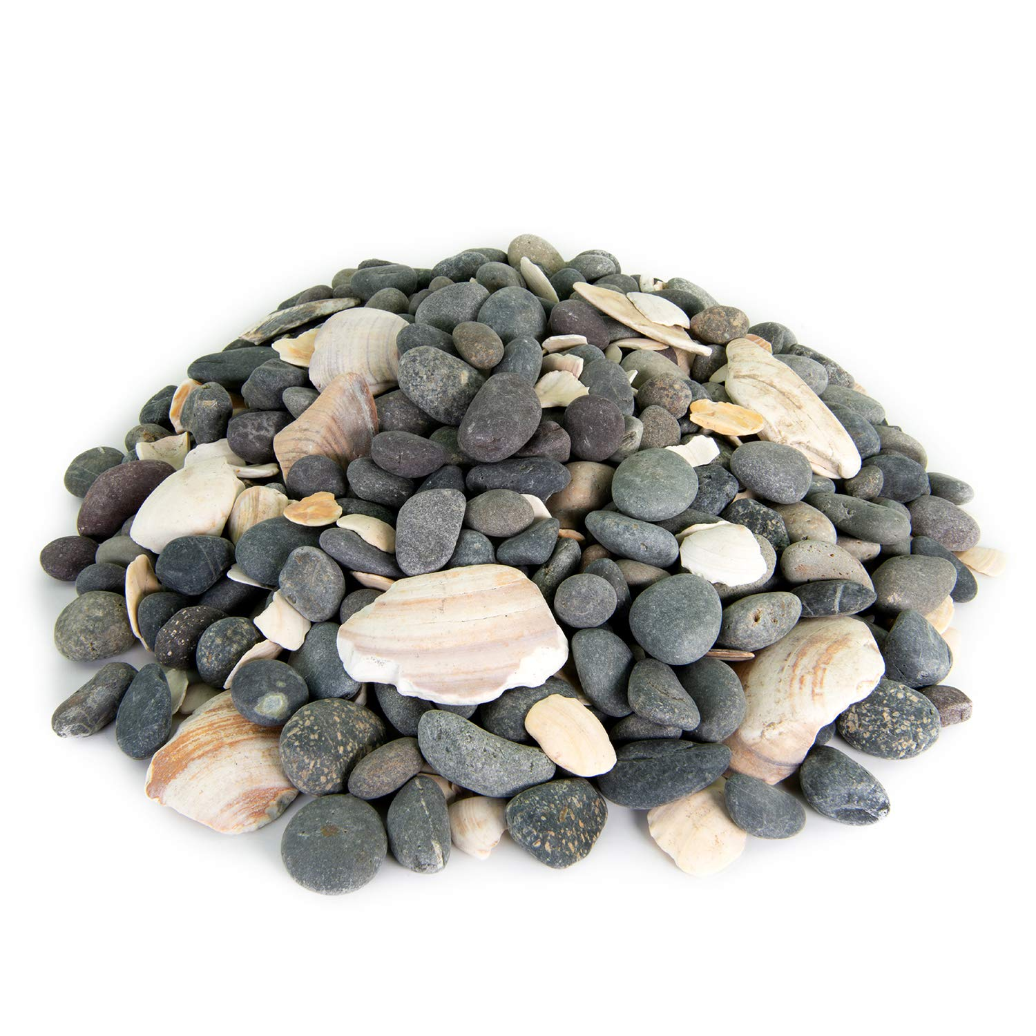 Mexican Beach Pebbles | 20 Pounds of Smooth Unpolished Stones | Hand-Picked, Premium Pebbles for Garden and Landscape Design | San Quintín, 5/8 Inch - 7/8 Inch