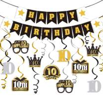 LINGTEER 10 Birthday Decorations Set - Happy 10th Birthday Party Swirls Streamers Crown Glasses Gift Box Sign | Happy Birthday Garland Banner Cheers to Ten Years Old Birthday Party Supplies