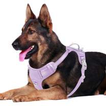 BARKBAY No Pull Dog Harness Front Clip Heavy Duty Reflective Easy Control Handle for Large Dog Walking with ID tag Pocket(Violet Purple,XL)