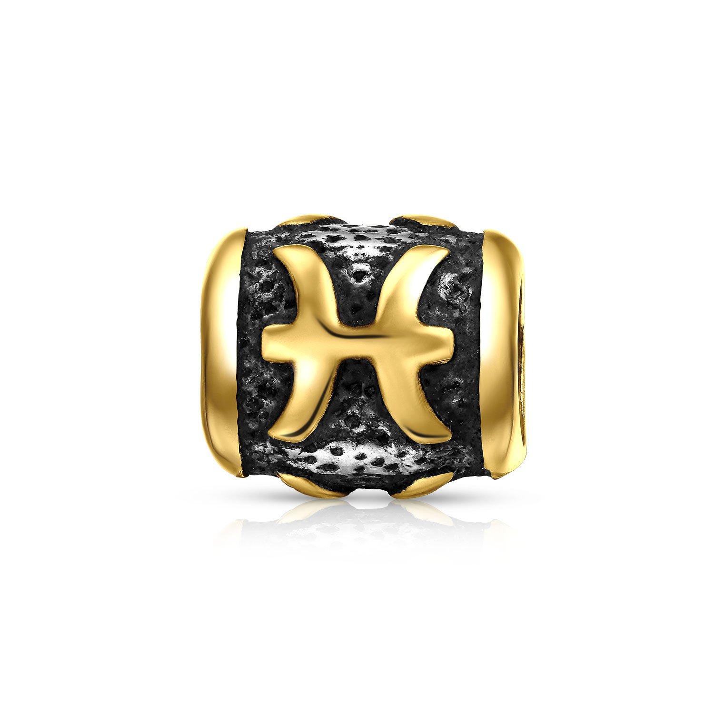 Astrology Horoscope Zodiac Pisces Charm Bead Fits European Bracelet