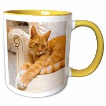 3dRose 236171_8 Happy orange tabby cat relaxing on fancy armchair, Yellow Mug, 11 oz