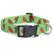 Animal Bug Themed Dog Collar