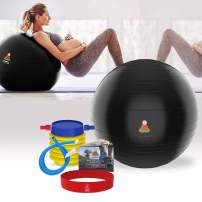 Lazy Monk Exercise Ball 21.5 & 25.5 inch, Fitness Workout Chair | Pregnancy Ball Anti-Burst Yoga Pilates Balance Gym Ball w/Pump, Extra Pin | Excersize Swiss, Elastic Loop & Hardcover Workout Guide