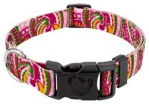 Country Brook Design - Deluxe Dog Collar - Paisley Collection - Made in The U.S.A.