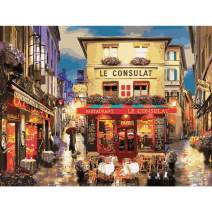 TOCARE Adult Paint by Numbers Kits for Adults Painting by Number On Canvas Birthday Wedding Christmas Gift Gift for Your Family,20x16Inch Paris Night