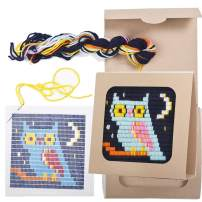 "Sozo - Colorful DIY Needlepoint Embroidery Craft Kit for Beginners. Eco Friendly Package That Turns into a Display Frame, Easier Than Cross Stitch. Size - 8"" x 8"" (Owl)"