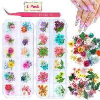2 Boxes Dried Flowers for Nail Art, KISSBUTY 24 Colors Dry Flowers Mini Real Natural Flowers Nail Art Supplies 3D Applique Nail Decoration Sticker for Tips Manicure Decor (Gypsophila Flowers Leaves)
