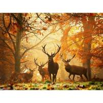 5D Diamond Painting Deer Forest Full Drill by Number Kits, Ginfonr Craft Rhinestone Jungle Animals Paint with Diamonds Set Arts Decorations (12x16inch)