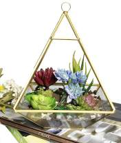Ferrisland Vintage Geometric Terrarium Decorative Jewelry Chest Window Box Storage Display Case Pentagon Shape Clear Glass and Brass Tone Air Plant Planter Geo Metal Slanted Top Swing Lid
