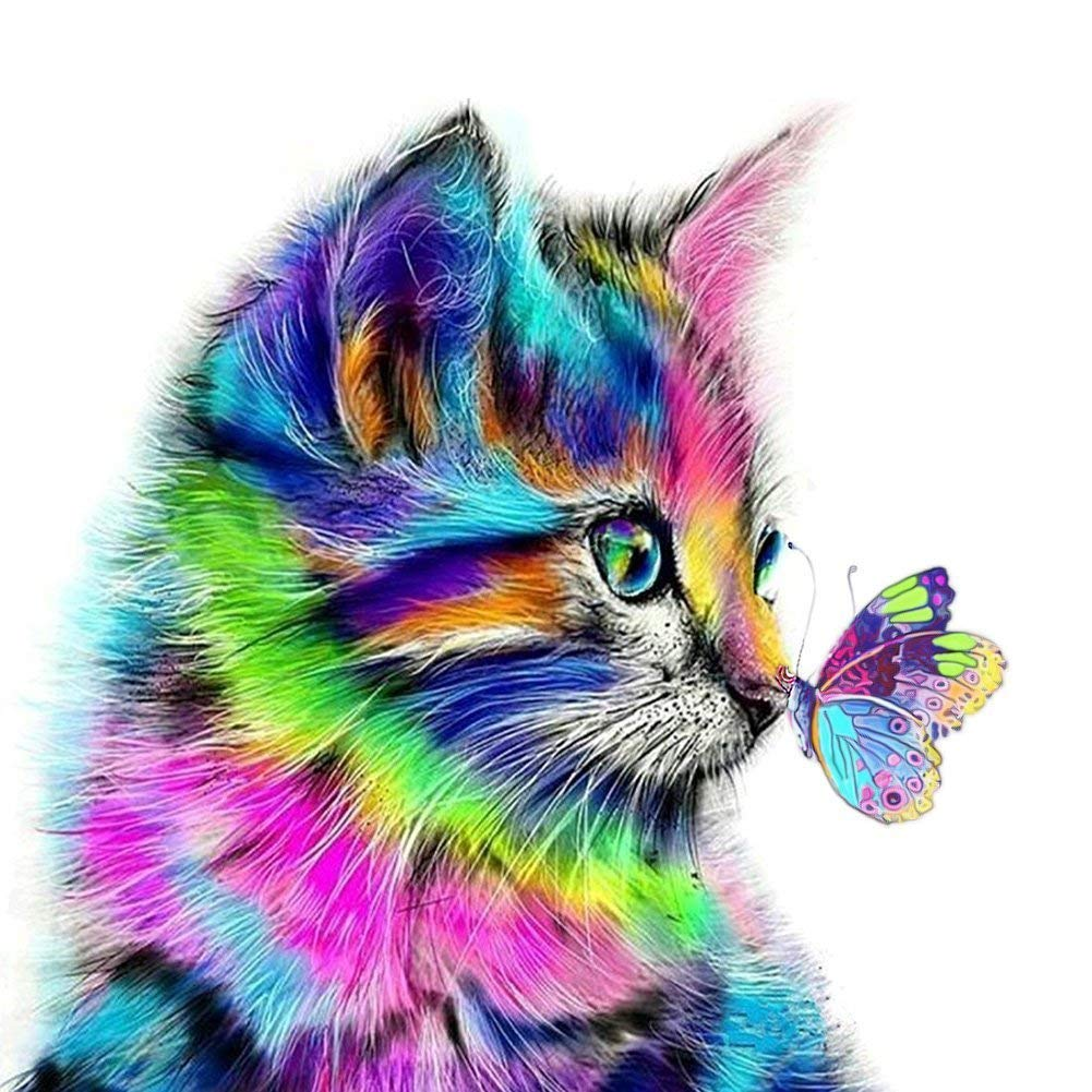 YXQSED [Framless] DIY Oil Painting Paint by Number Kit for Adults - Colorful cat 16x20 Inch