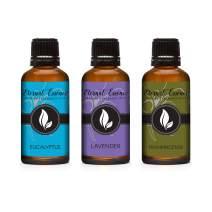 30ML - Trio (3) - Eucalyptus, Lavender Chamomile & Frankincense - Premium Fragrance Oil Trio - 30ML