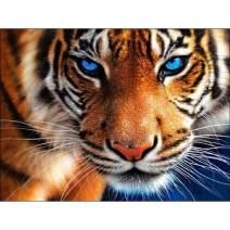 "TINMI ARTS-Diamond Painting Aggressive Tiger Full Round-DIY 5D Mosaic Cross Stitch Kits Paint with Diamonds Home Wall Décor[14""x12""]"