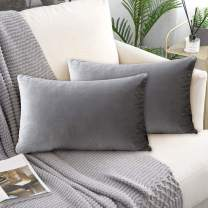 laqula Decorative Velvet Throw Pillow Covers - 12 x 20 Inch Set of 2 Soft Solid Cushion Pillowcases with Hidden Zipper for Home Sofa Bed Car Decor (Silver Gray)