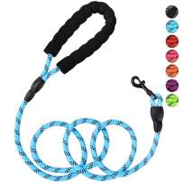 Petmegoo 5ft 1/3in Light Weight Strong Blue Dog Leash for Small Dogs & XSmall Dogs- Highly Reflective Durable Rope Puppy Leash with Soft Padded Anti-Slip Handle for Casual Walk(0~18lbs.)