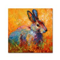 Bunny IV by Marion Rose, 18x18-Inch Canvas Wall Art