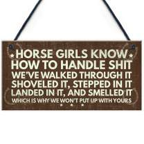 """Meijiafei Horse Signs Funny Hanging Plaque Horse Signs for Bedroom Signs About Horses Keepsake Gift 10"""" X 5"""""""