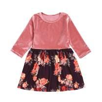 Baby Girls Fall Dresses Long Sleeve Plush Floral Skirt Playwear Outfits