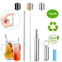 DOTSOG Portable Telescopic Straws,Reusable Collapsible Straw,Telescopic Stainless Steel Metal Drinking Straw with Case,Silicone Mouth,Perfect for Drinking Water, Smoothie, Juice, Milkshake(Silver)