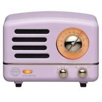 Muzen Portable Wireless High Definition Audio FM Radio & Bluetooth Speaker, Metal Lavender, Travel Case Included - Classic Vintage Retro Design