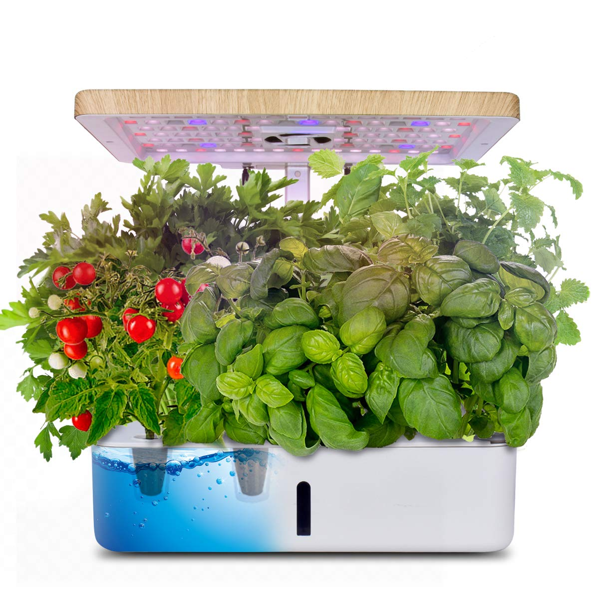 Moistenland Hydroponics Growing System Indoor Herb Garden Starter Kit W Led Grow Light Plant Germination Kits 12 Plant Pots For Home Kitchen Gardening 12 Pots