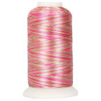 Threadart Variegated Polyester Embroidery Thread - 40wt - 1000m - 25 Colors Available - No. 19 - Victoria Garden