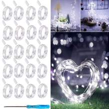 LED Fairy String Lights, 20 Pack 20 LED Micro Starry Lights Waterproof Silver Wire Battery Operated Lights Twinkle Star Lights Bottle Lights for Bedroom Garden Party Xmas (Cool White)