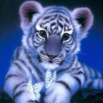SKRYUIE 5D Full Drill Diamond Painting White Tiger and Butterfly by Number Kits, Paint with Diamonds Arts Embroidery DIY Craft Set Arts Decorations (14x14 inch)