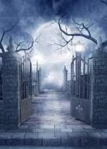 Dudaacvt 5ft x 7ft Halloween Background Photography Backdrop Moon Night Backdrop Studio Prop Q0270507