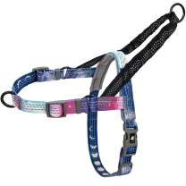 Leashboss Pattern Reflective No Pull Dog Harness with Bungee Handle, Rear and Front Clip Attachment, Pattern Collection (Space Pattern, Small)