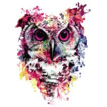 MXJSUA 5D Diamond Painting by Number Kit DIY Crystal Rhinestone Arts Craft Picture Supplies for Home Wall Decor,Watercolor Owl 12x12In