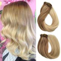 Ombre Human Hair Extension Clip on 120 Gram 20 Inch Straight Remy Hair Extensions Golden Brown to Blonde Ombre Clips in Real Hairpieces for Full Head (#12T613/613)