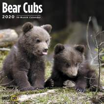 2020 Bear Cubs Wall Calendar by Bright Day, 16 Month 12 x 12 Inch, Cute Forest Animals