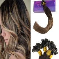 LaaVoo 14 Inch Nail Tip Brazilian Remy Human Hair Extensions Balayage Ombre Color #2 Darkest Brown to #6 Medium Brown and #18 Ash Blonde U Tip Hair Extensions 50Gram