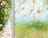 Coavas Privacy Window Film Non-Adhesive Clear Bird Window Film Decorative Glass Film Static Cling Film Bird Window Stickers for Home Office 23In. by 78.7In. Clear