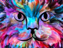 "TINMI ARTS-5D Diamond Painting Kits Full Round Mosaic Cross Stitch Pattern Rhinestone Embroidery Kits Home Décor[20""x16"",Watercolor Cat]"