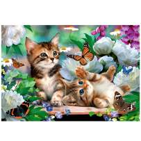 RUIOU Cute Cats Diamond Painting Kits for Adults with Tools Cats Full Drill DIY Diamond Art 5D Paint Magical Paint by Number with Art Home Wall Decor 12x16 inch