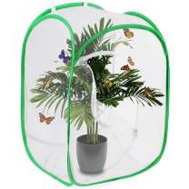Scotamalone Butterfly Habitat Garden Cage Butterfly Cage Insect Net Terrarium Net Pop-up 23.6 Inches Tall White Green Kids Butterfly Net Watch Butterfly Life Cycle Watch Amazing Transformation