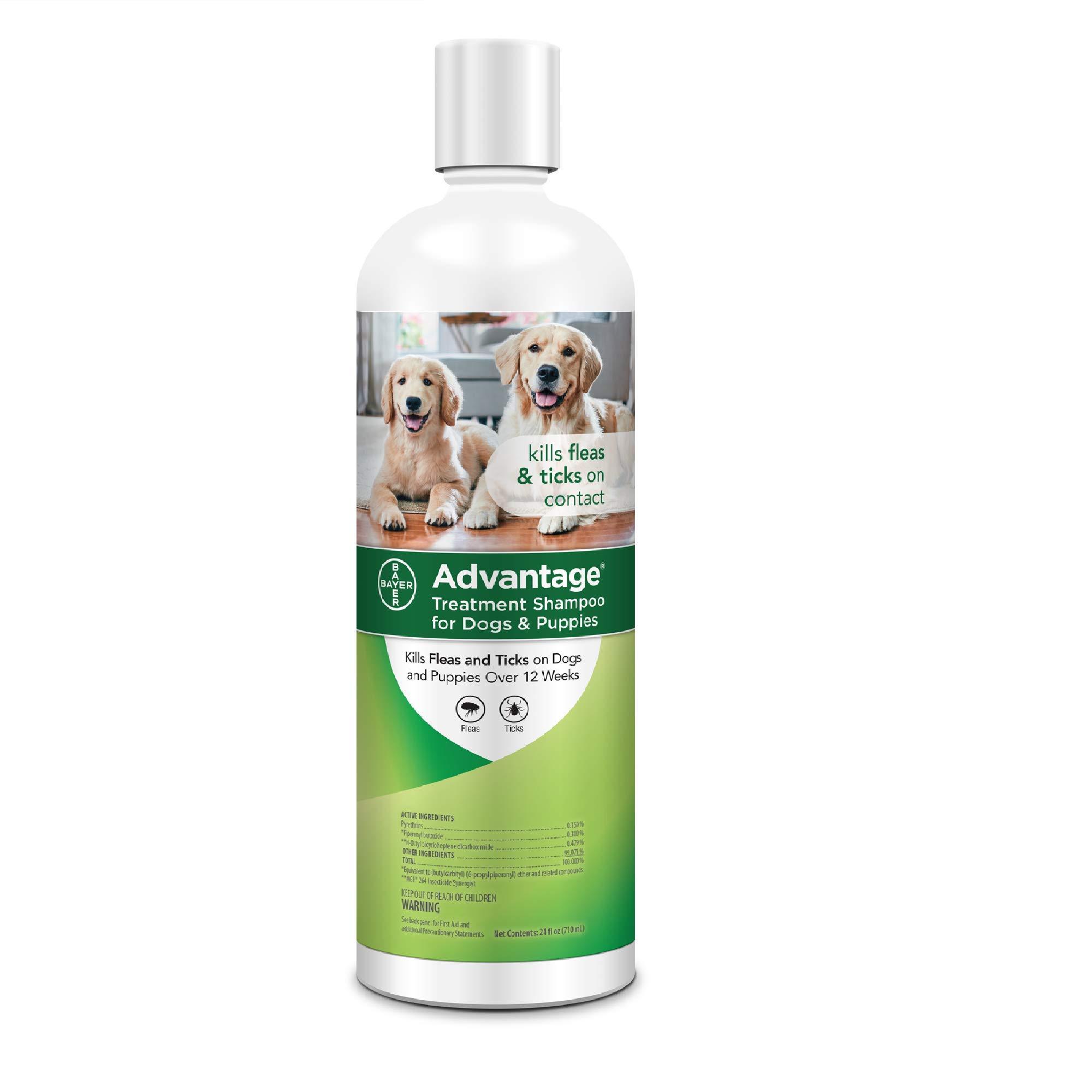 Advantage Shampoo