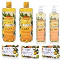 Dr. Jacobs Naturals Pure Castile Soap - The Starter Set - Free of Parabens, Sulfates, Synthetics, Gltuen and GMO (Citrus Dreams)