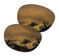 SmartVLT Men's Replacement Lenses for Oakley Garage Rock OO9175 Sunglass - More Options