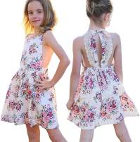EGELEXY Floral Girls Dress Lace Backless Party Dress Vintage Toddler Dress Baby Girls Cream Summer Party Baby Clothes