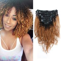 Sassina Real Remi Human Hair Clip In Extensions Kinky Curly Style Two Tone Ombre Natural Black to Strawberry Blonde For Black Women 7 Pieces Per Set 120 Grams With 17 Clips KC TN27 14 Inch