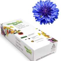 Window Garden - Bachelor Button Flower Starter Kit - Grow Your Own Beauty. Germinate Seeds on Your Windowsill Then Move Planter or Landscape. Mini Greenhouse System Make's it Foolproof, Easy and Fun.