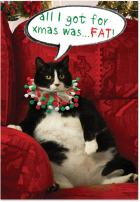 12 'Got Fat' Boxed Christmas Cards with Envelopes 4.63 x 6.75 inch, Funny Fat Cat Christmas Notes, Silly Large Feline Holiday Notes, Big Chubby Kitty Cat Holiday Cards B1939