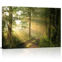 """Canvas Wall Art - Green Trees Foggy Morning Spring Landscape Pictures - Modern Wall Decor Gallery Canvas Wraps Giclee Print Stretched and Framed Ready to Hang - 12"""" x 16"""""""